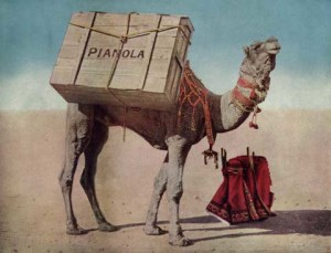 historyjpgs_camel